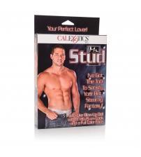 Mr. Stud Love Doll