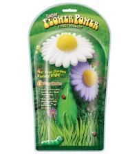 Super Flower Power 2 Piece Bouquet